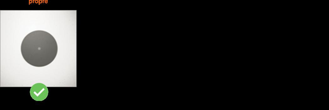 fibre optique propre